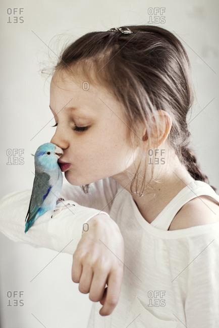 Sweden, Girl kissing blue pet bird