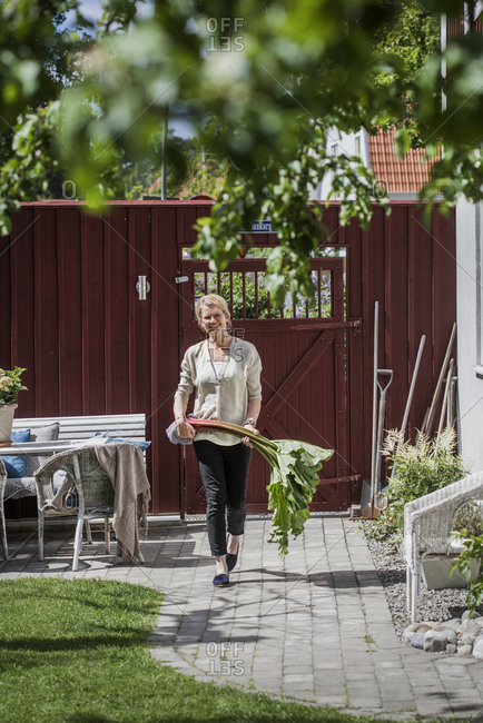 Sweden, Vastmanland, Vasteras, Mature woman carrying chard in backyard