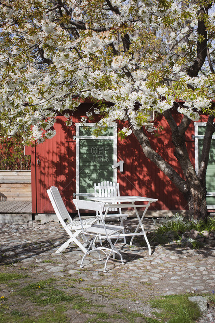 Sweden, Vastmanland, Vasteras, White table and chairs under cherry tree