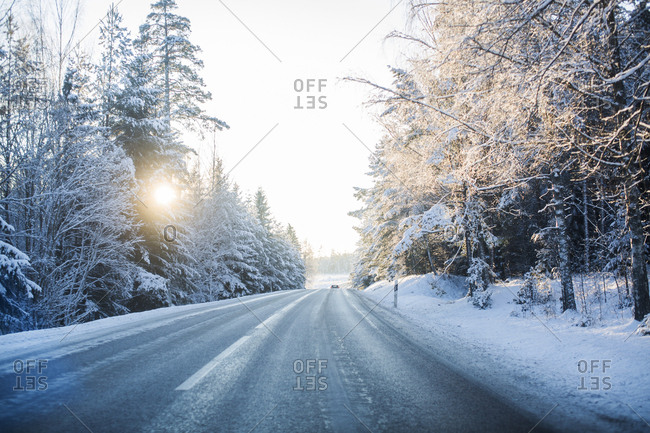 Sweden, Sodermanland, Strangnas, Empty road surrounded by snowy trees at sunrise