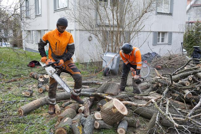 Sweden, Sodermanland, Arborists cutting logs