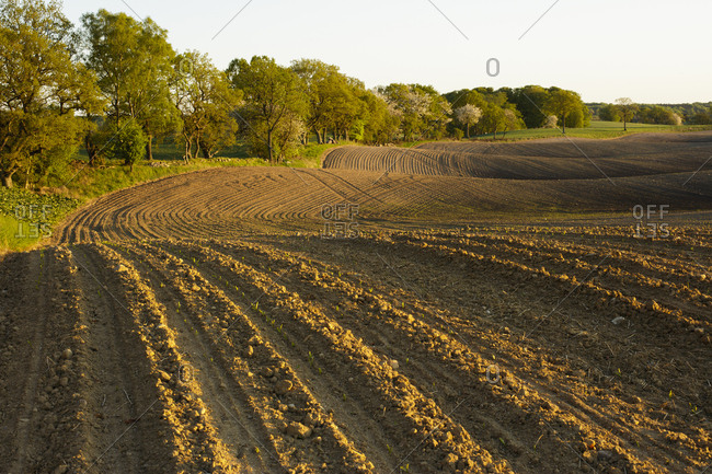 Sweden, Skane, Rockarp, field after plowing