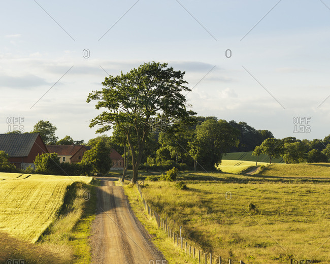 Sweden, Skane, Rockarp, Bramstorp, country road in rolling landscape