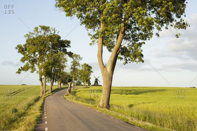 Sweden, Skane, Krageholm, country road in rural scene