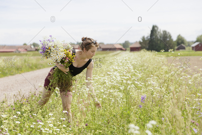 Sweden, Dalarna, Mora, Mid adult woman with bunch of wildflowers