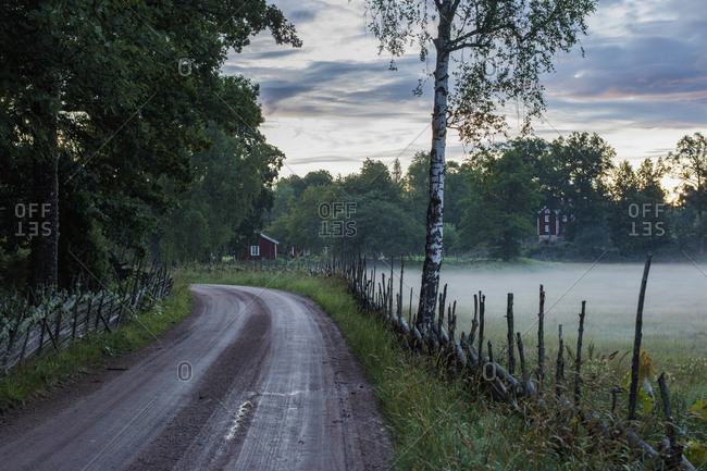 Sweden, Smaland, Stensjo, Empty dirt road with foggy field at dawn