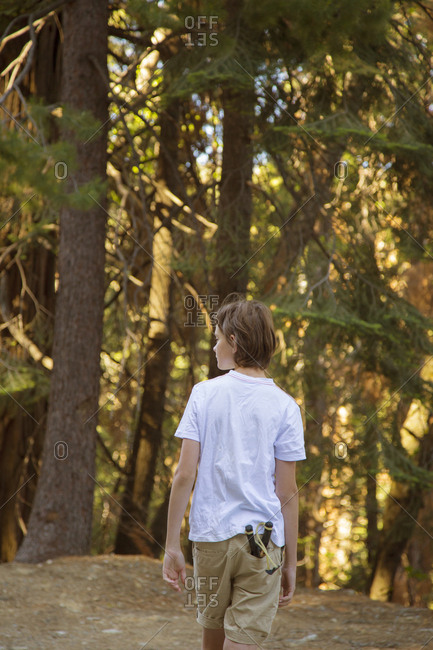 USA, California, Yosemite, Boy walking through forest with catapult toy in pocket