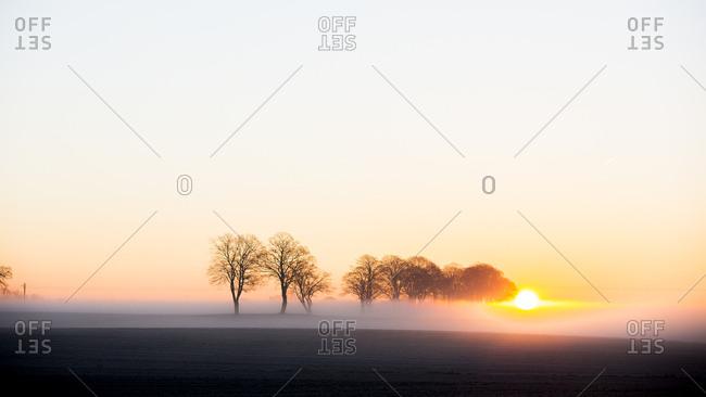 Sweden, Skane, Skurup, Soderslatt, Landscape with rising sun
