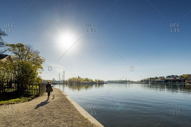 Sweden, Stockholm, Skeppsholmen, Woman walking with dog near harbor