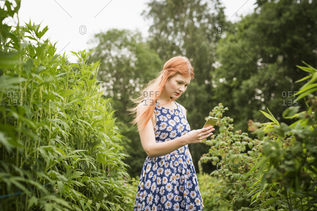 Finland, Pirkanmaa, Tampere, Woman photographing nature
