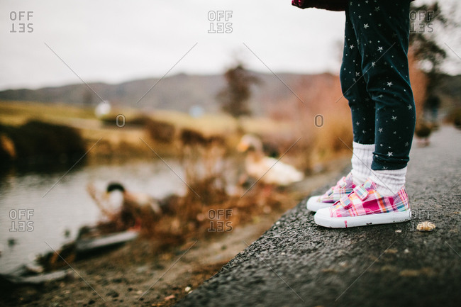 Young girl standing by pond with ducks