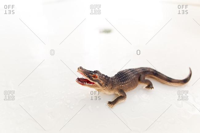 Alligator bath toy by itself on surface of bathtub