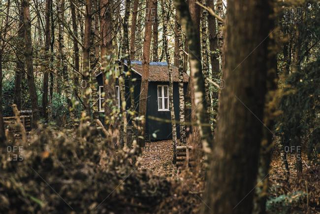 Little wooden barn in autumn forest.