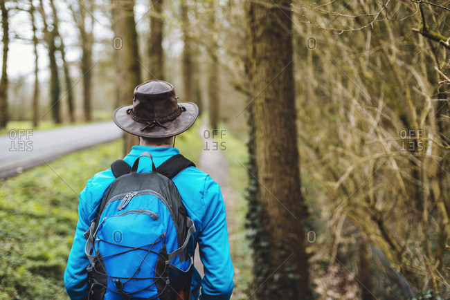 Backpacker with hat walking on path between trees. Rear view.