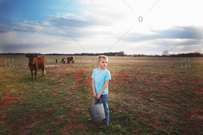 Boy holding a bucket in a field with cattle