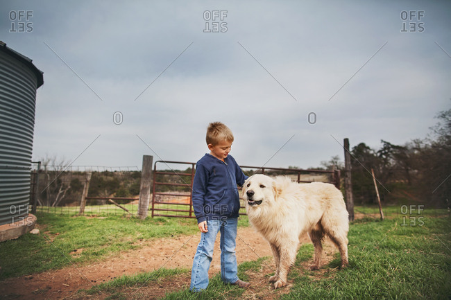 Boy petting a big dog