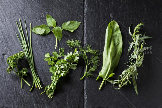 Ingredients of Frankfurt green sauce