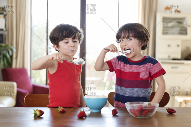 Portrait of twin brothers eating whipped cream at home