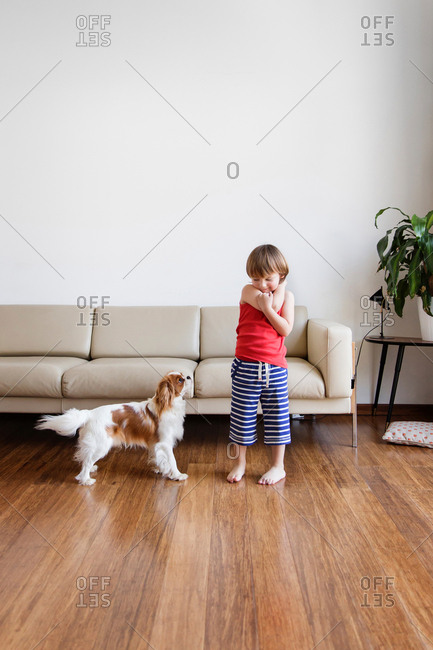Little boy playing with his dog in the living room