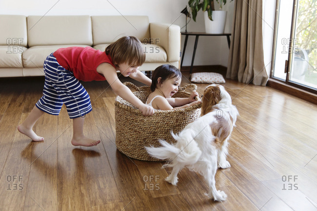 Toddler girl sitting in a basket while her brother pushing her around in the living room