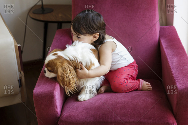 Toddler girl sitting on an armchair cuddling with dog