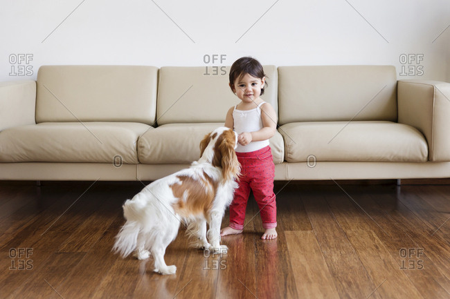Smiling toddler girl standing in the living room with dog