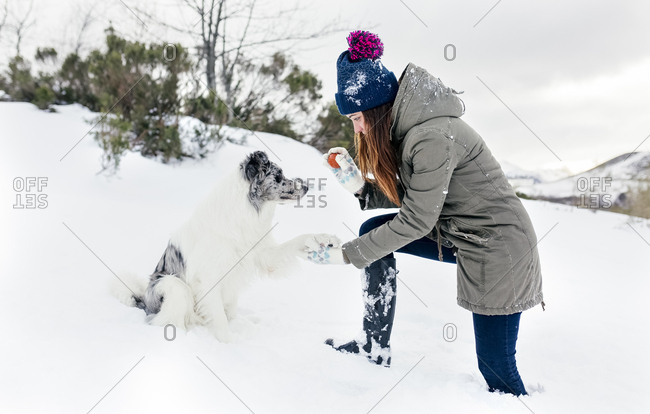 Young woman playing with her border collie in the snow