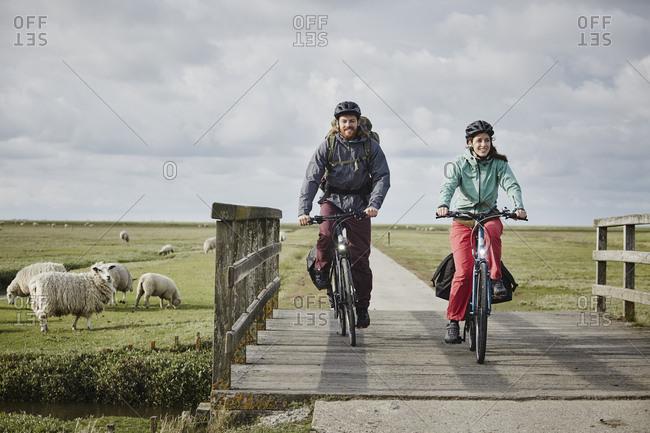Germany - Schleswig-Holstein - Eiderstedt - couple on bicycles crossing bridge on path through salt marsh