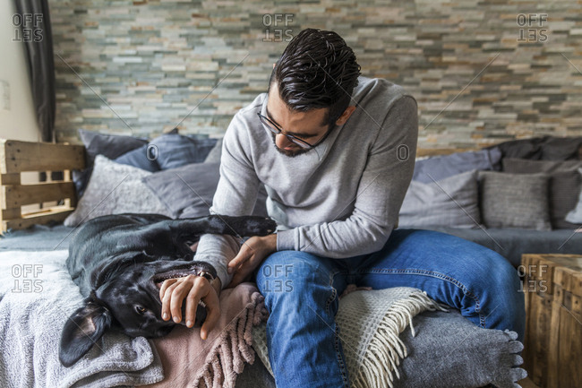 Man playing with his dog on the couch at home