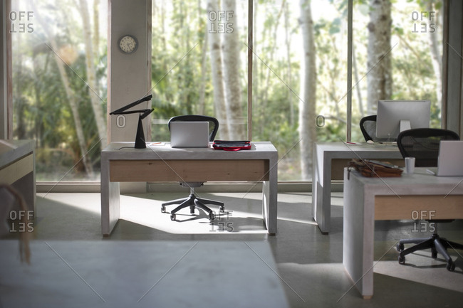 Interior of a modern office with nature view