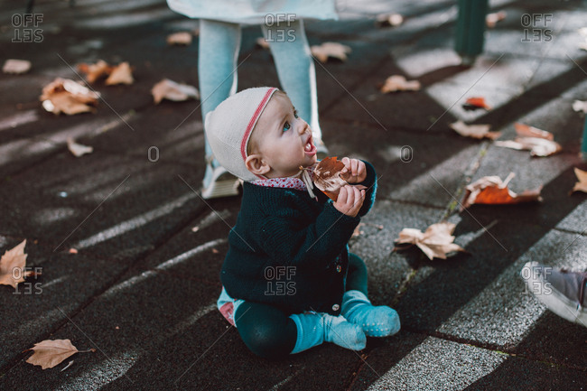 Baby playing in fallen leaves during Autumn