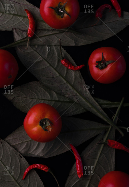 An arrangement of tomatoes, chilies and leaves