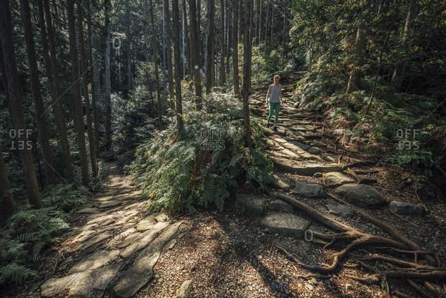 Hiker walking in forest