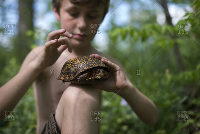 Boy holding a wild turtle in woods