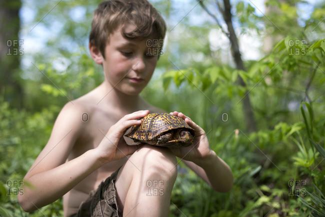 Boy holding a wild turtle