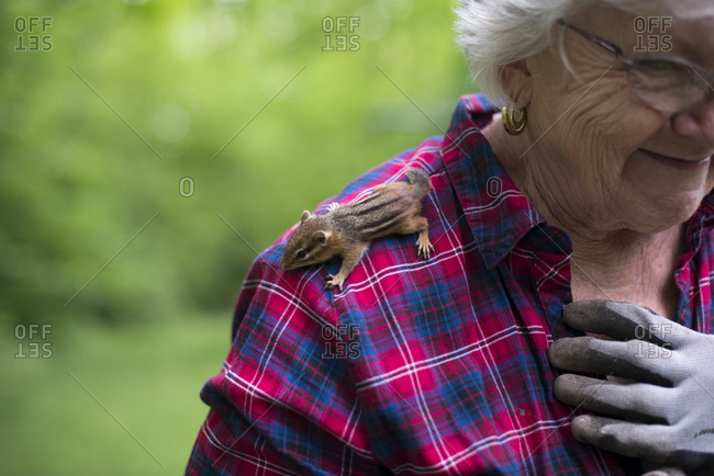 Chipmunk on a woman's shoulder