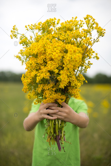 Boy holding wildflowers in front of face