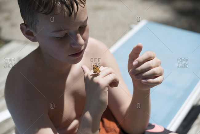 Boy watching butterfly on his hand