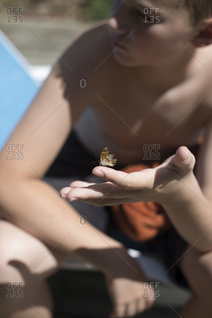 Boy with butterfly on his hand