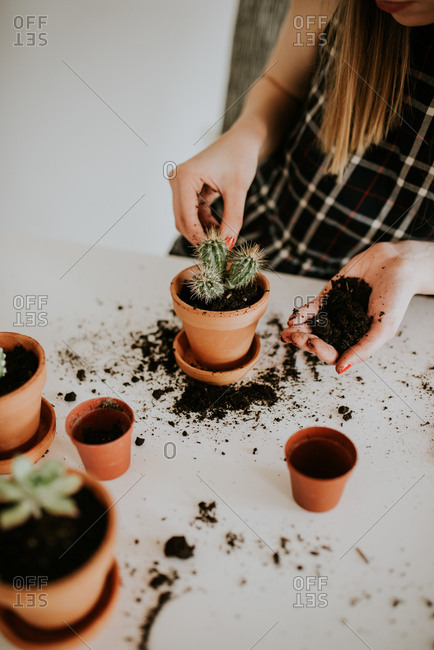 Woman putting dirt in a small pot with a cactus