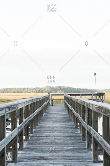 A walkway through rural marshlands