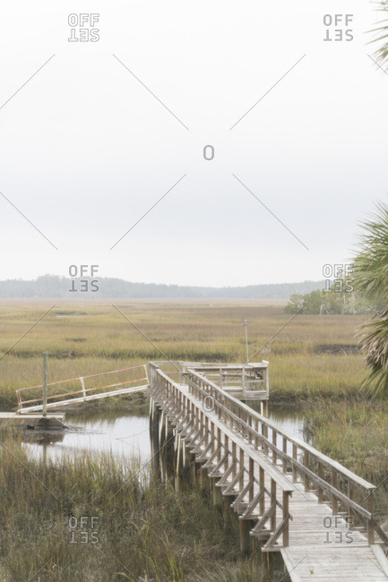 Walkway through rural marshlands