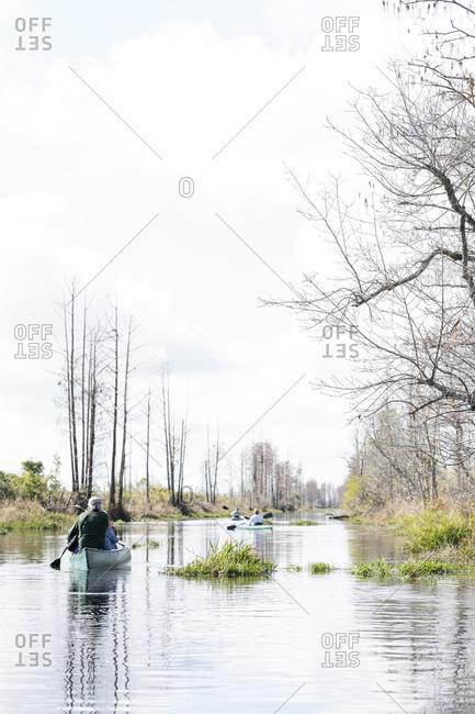 Person in canoe in wetlands
