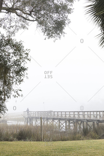 Walkway structure in misty setting