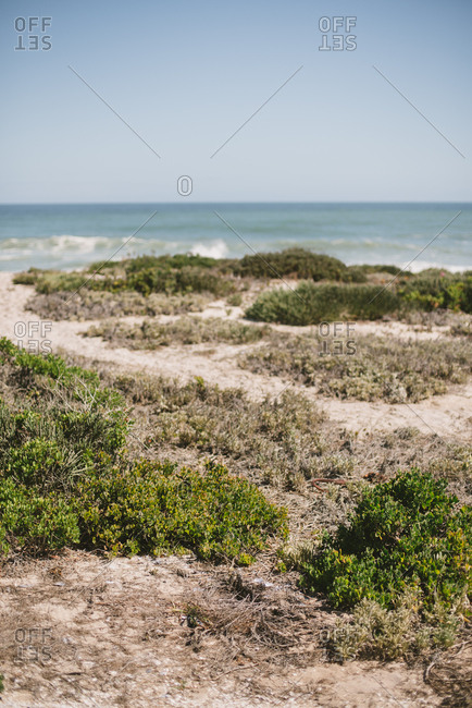 Coastal view along the shore of Langebaan, South Africa