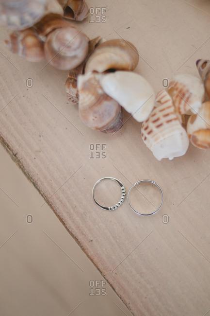 Wedding rings by seashells