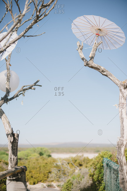 Parasol in a tree at a beach wedding in South Africa