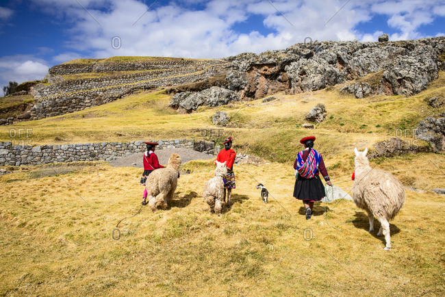 Hispanic mother and children walking llamas in rural landscape