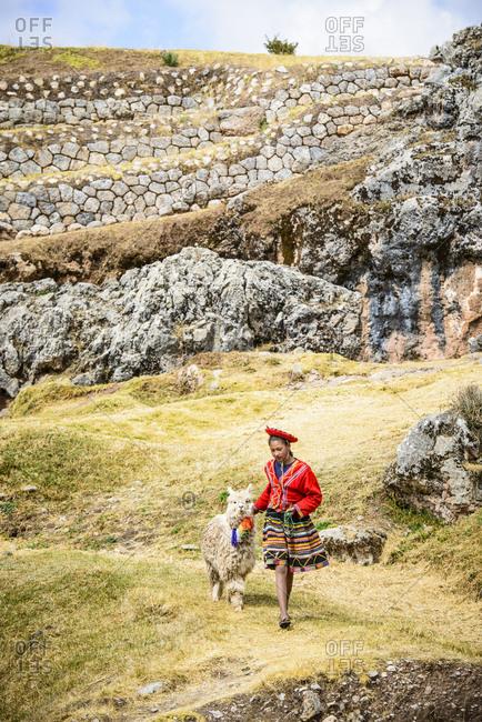 Hispanic girl walking llama in rural landscape