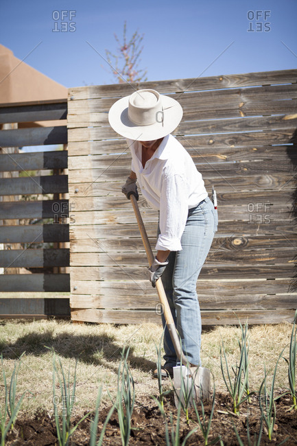 Caucasian woman gardening in backyard